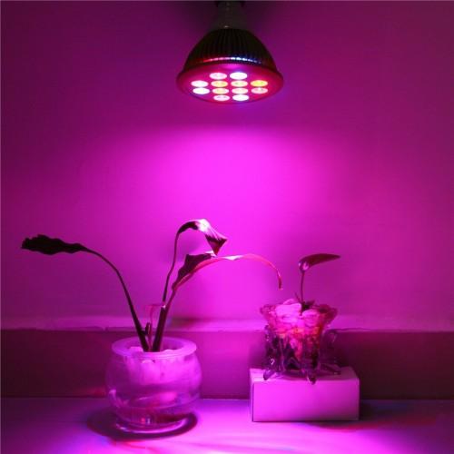12w ac110v 220v red green e27 base led grow light flower. Black Bedroom Furniture Sets. Home Design Ideas