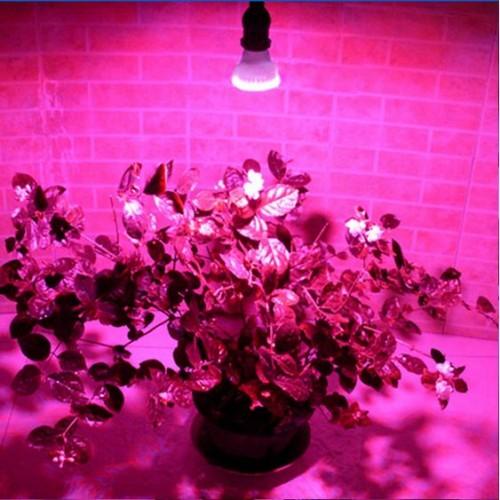 2.2w/3w/4.5watt RED And BLUE E27 Led Hydroponics Light LED Plant Grow  Growth Light Bulb Lamp Ac110v/220v